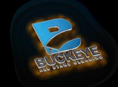 Buckeye All Stars Cleaning